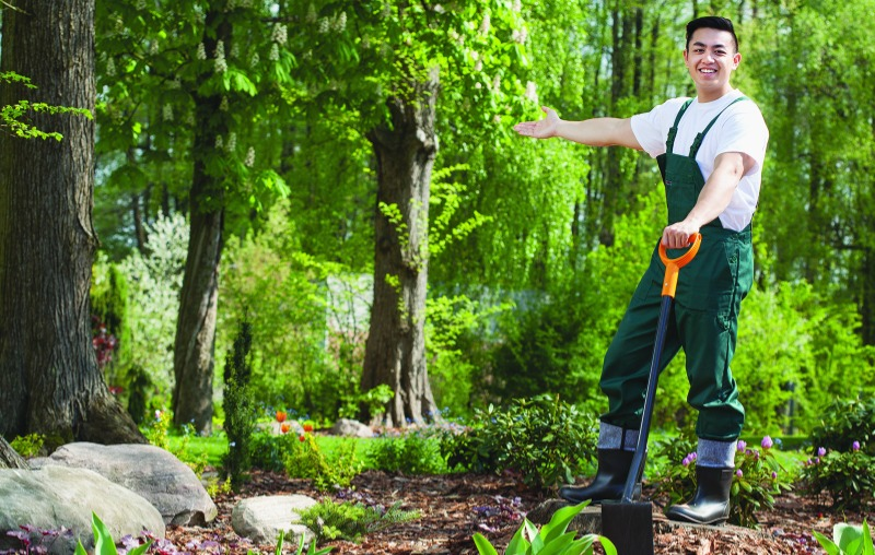 3 reasons to hire a professional landscaper – Royal Examiner